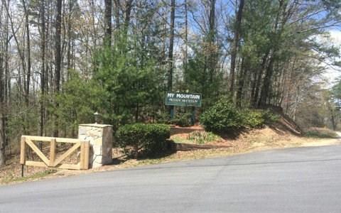 My Mountain Rd, Morganton, GA - USA (photo 2)