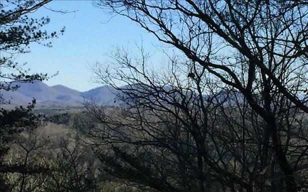 Mountain Laurel Ridg, Mineral Bluff, GA - USA (photo 1)