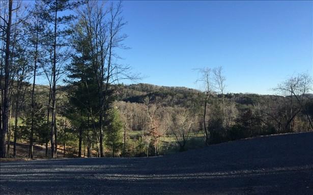 Mountain Laurel Ridg, Mineral Bluff, GA - USA (photo 2)