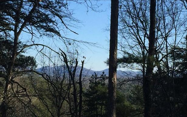 Mountain Laurel Ridg, Mineral Bluff, GA - USA (photo 4)