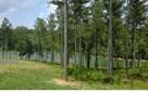 Lt220 Thirteen Hundred, Blairsville, GA - USA (photo 1)
