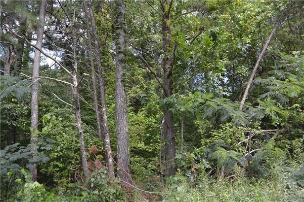 00 Roscoe Collette Road, Dawsonville, GA - USA (photo 4)