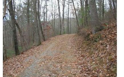 157 Brown Mountain Trail, Suches, GA - USA (photo 2)