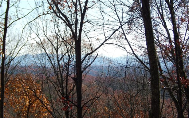 Lot 9 Stuart Mountain, Mineral Bluff, GA - USA (photo 1)