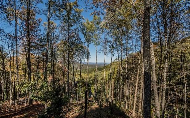 Lt 17 Aska's Grand Vista, Blue Ridge, GA - USA (photo 2)