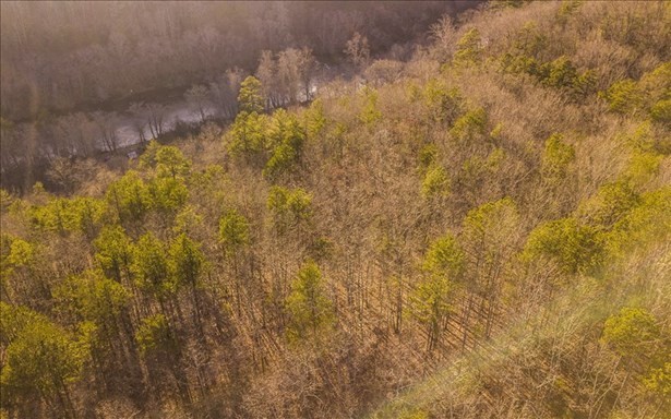 1021 North Toccoa River, Mineral Bluff, GA - USA (photo 3)