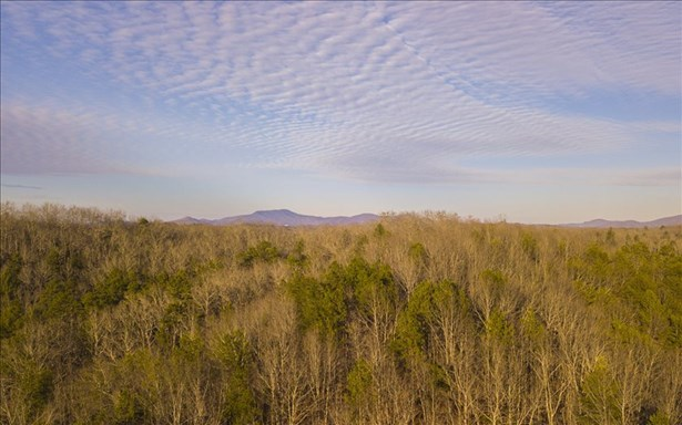 1021 North Toccoa River, Mineral Bluff, GA - USA (photo 5)