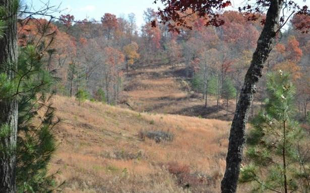 Lt171 Old Toccoa Farm, Mineral Bluff, GA - USA (photo 2)