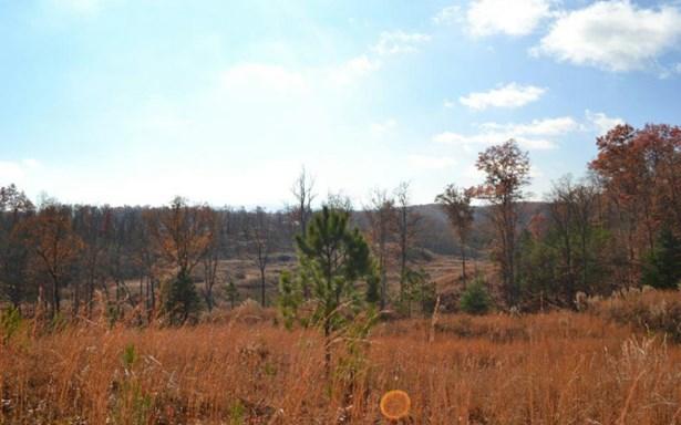 Lt171 Old Toccoa Farm, Mineral Bluff, GA - USA (photo 4)