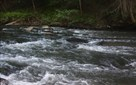 0 River Edge, Ellijay, GA - USA (photo 1)