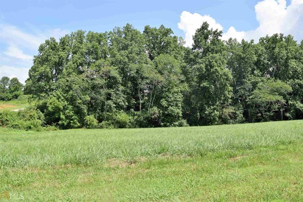 1401 Red Top Ln, Demorest, GA - USA (photo 1)