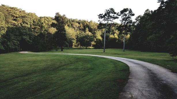 321 Puckett Creek Road, Canton, GA - USA (photo 3)