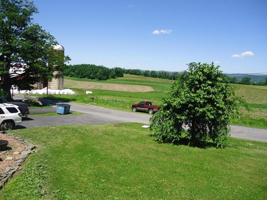 2833 Buck Hill Road, Muncy, PA - USA (photo 5)
