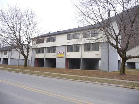 1309 Huron Avenue, Renovo, PA - USA (photo 1)