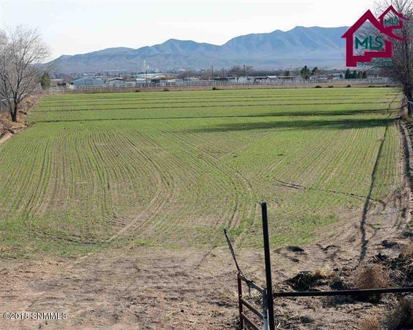 Farm - Anthony, NM