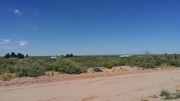 Acreage/Undeveloped - Chaparral, NM (photo 2)