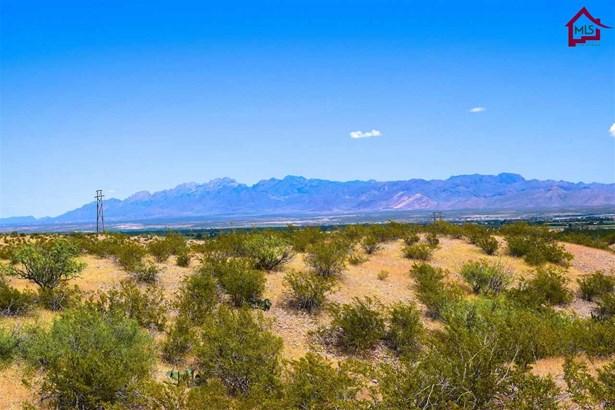 Acreage/Undeveloped - LA MESA, NM (photo 3)