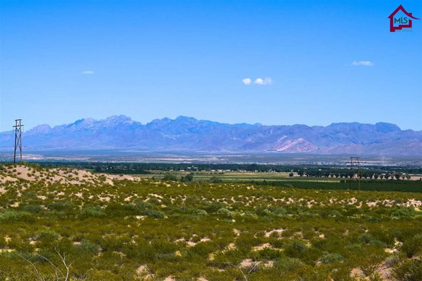 Acreage/Undeveloped - LA MESA, NM (photo 4)