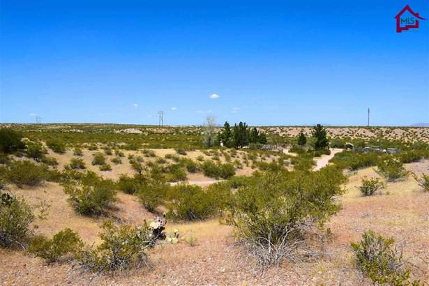 Acreage/Undeveloped - LA MESA, NM (photo 5)