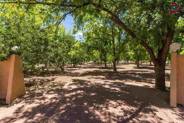 Farm - Las Cruces, NM (photo 1)