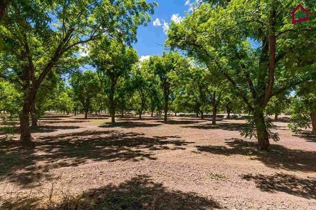 Farm - Las Cruces, NM (photo 2)