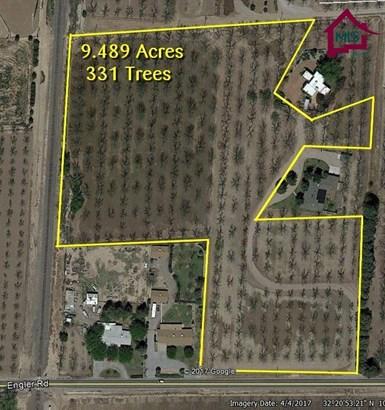 Farm - Las Cruces, NM (photo 4)