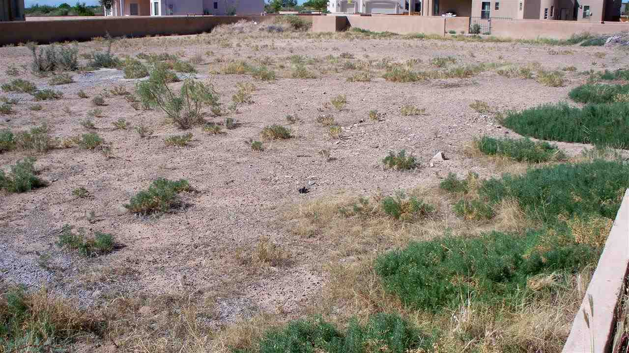 Acreage/Undeveloped - DEMING, NM (photo 1)