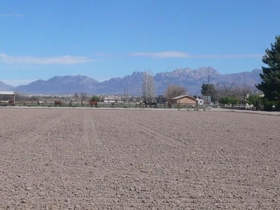 Acreage/Undeveloped - Mesilla, NM (photo 2)