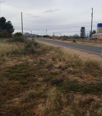 Acreage/Undeveloped - Chaparral, NM (photo 4)