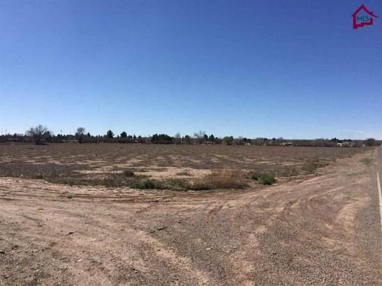 Farm - La Mesa, NM (photo 2)