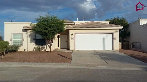House, Southwestern - SANTA TERESA, NM (photo 1)