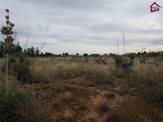 Acreage/Undeveloped - Chaparral, NM (photo 1)