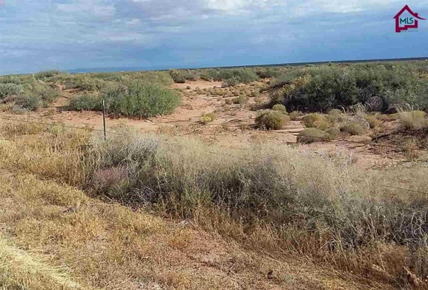 Acreage/Undeveloped - Chaparral, NM (photo 5)
