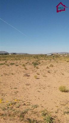 Res Lots - Single Family - CHAPARRAL, NM (photo 2)