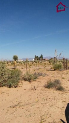 Res Lots - Single Family - Chaparral, NM (photo 3)