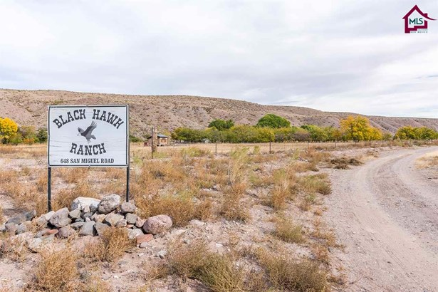Ranch, House - TRUTH OR CONSEQUENCES, NM (photo 1)