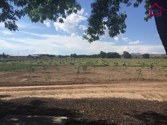 Farms/Ranches - HATCH, NM (photo 2)
