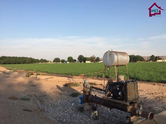 Farms/Ranches - HATCH, NM (photo 3)