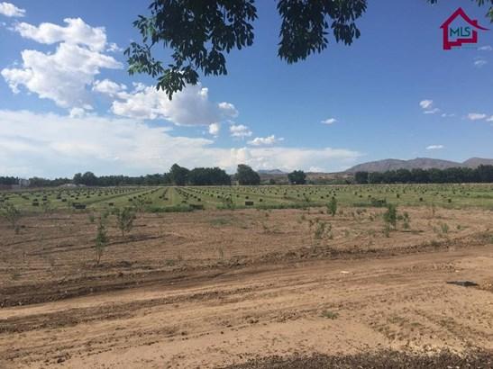 Farms/Ranches - HATCH, NM (photo 4)