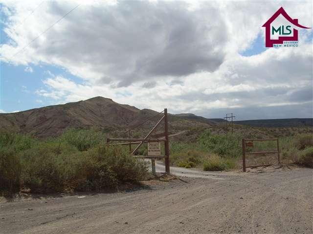 Acreage/Undeveloped - HATCH, NM (photo 3)