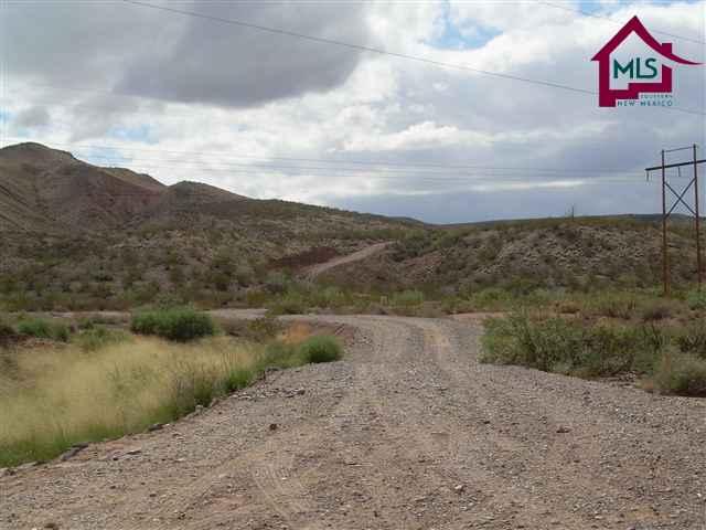Acreage/Undeveloped - HATCH, NM (photo 4)