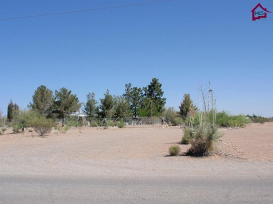 Contemporary, House - Chaparral, NM (photo 2)