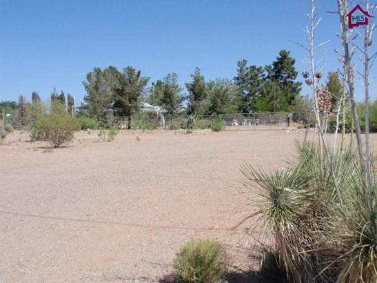 House - Chaparral, NM (photo 3)