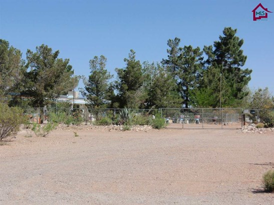 Ranch, House - CHAPARRAL, NM (photo 4)