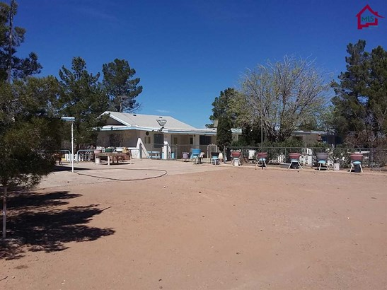 Ranch, House - CHAPARRAL, NM (photo 5)