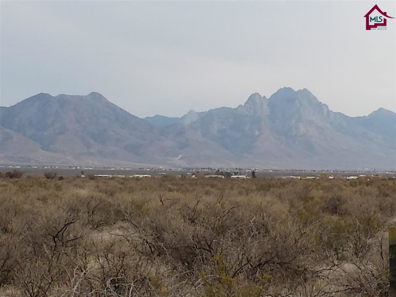 Acreage/Undeveloped - LAS CRUCES, NM (photo 3)