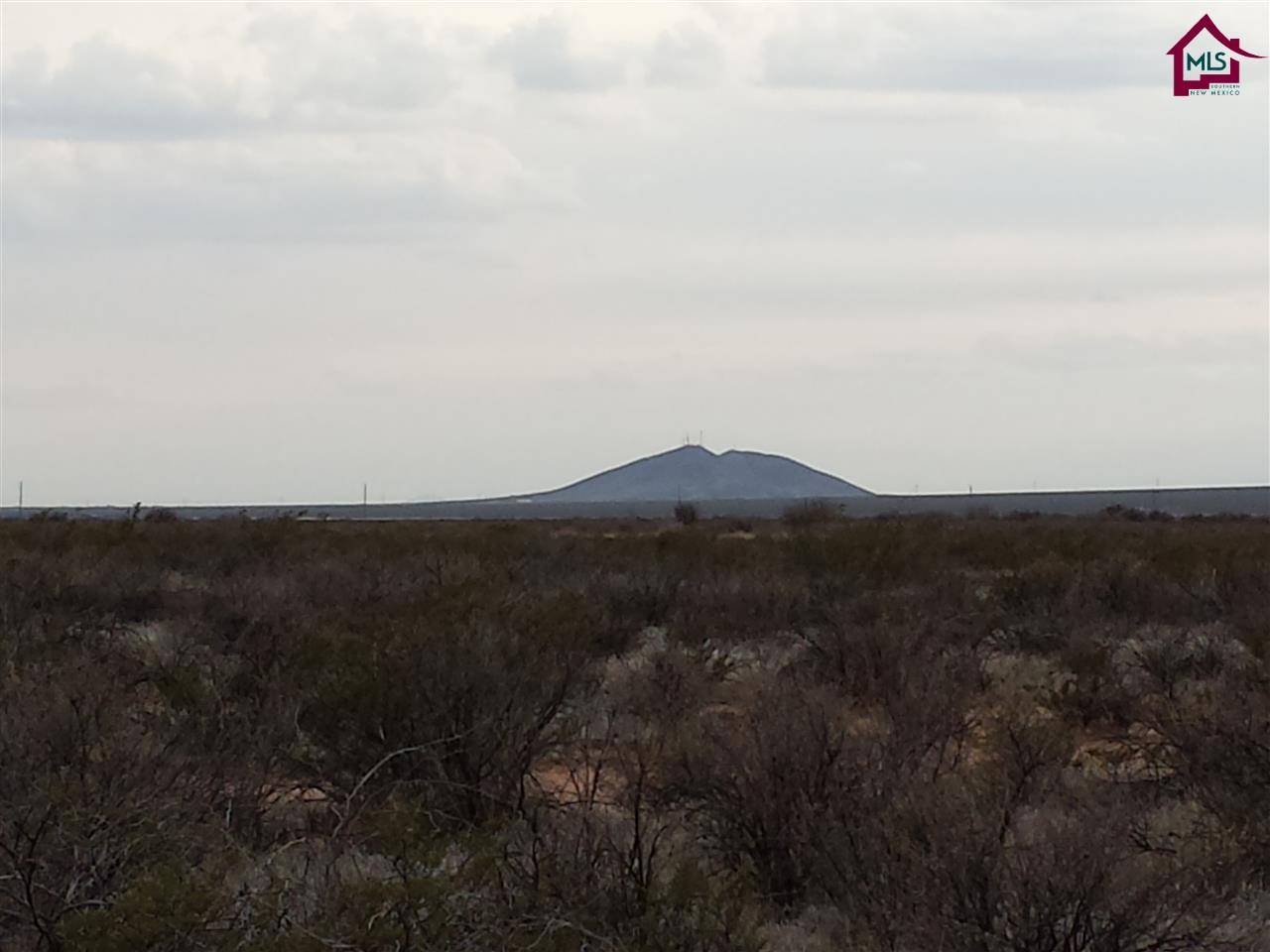Acreage/Undeveloped - LAS CRUCES, NM (photo 4)