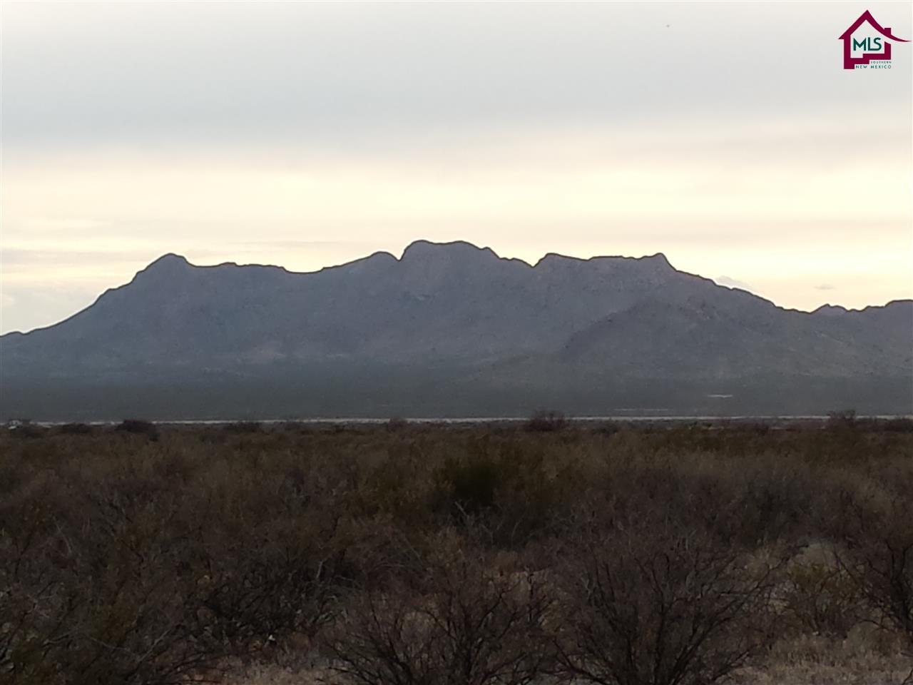Acreage/Undeveloped - LAS CRUCES, NM (photo 5)