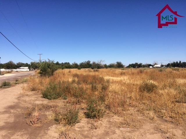 Res Lot - Multi-Family - Las Cruces, NM (photo 4)