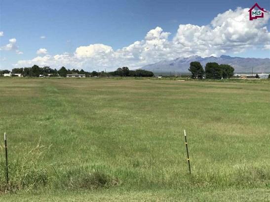 Farm - La Mesa, NM (photo 3)